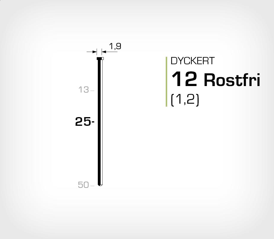Dyckert rostfri 12/25 SS (SKN 12-25 SS)